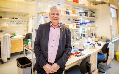 Ny princip för cancerbehandling visar lovande effekt