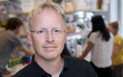 Ny typ av immunterapi kan göra cancerbehandling effektivare